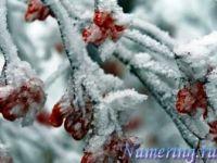 Подробнее: Нумерологический бизнес-прогноз на декабрь 2011 года