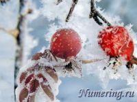 Подробнее: Общий нумерологический прогноз на каждый день недели с 30 января по 5 февраля