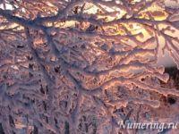 Подробнее: Общий нумерологический прогноз на февраль 2012 года