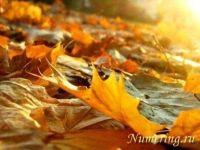 Подробнее: Общий нумерологический прогноз на сентябрь 2012 года