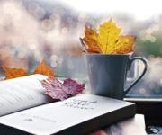 Подробнее: Нумерология отношений: прогноз на ноябрь 2011 года